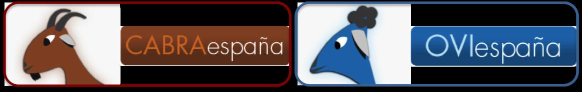 Website CABRA-OVIEspana