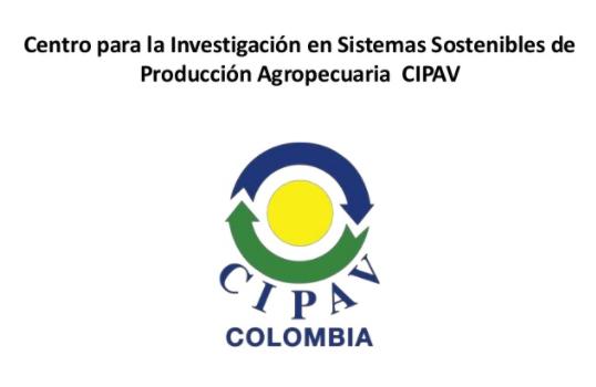Website CIPAV Colombia